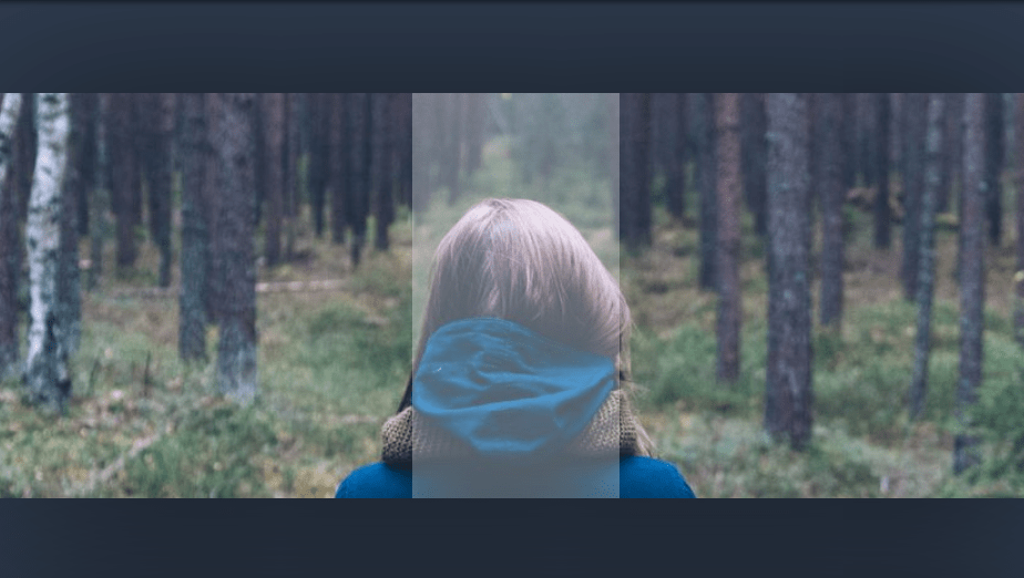 image slider with panel in html css