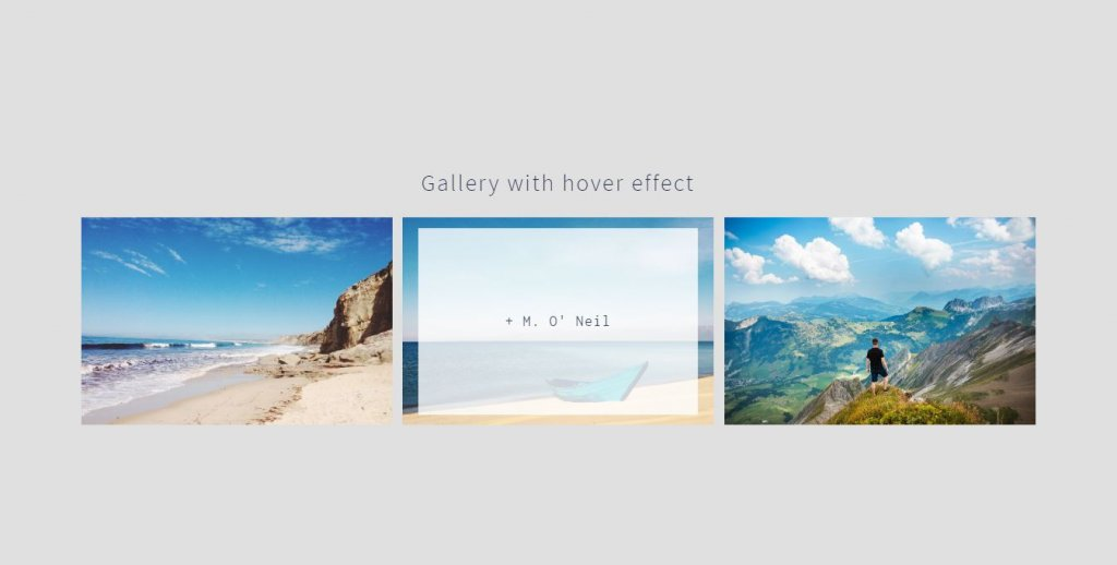 hover effect css image/photo gallery