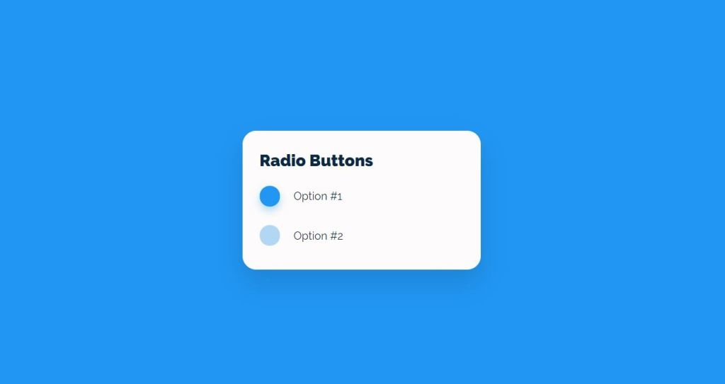 example of custom input type radio button of different style and checkboxes which displays checked symbol using HTML, CSS and Javascipt.