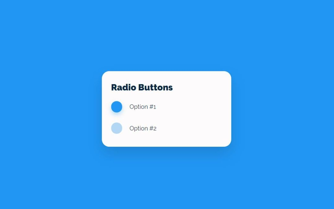 Radio Button CSS Styles Examples