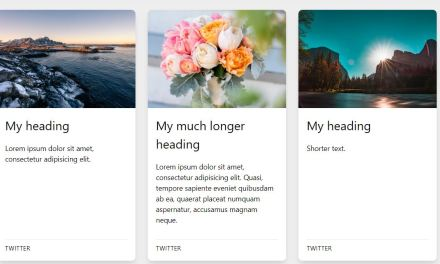 23+ CSS Card Layout Examples with Code Snippets