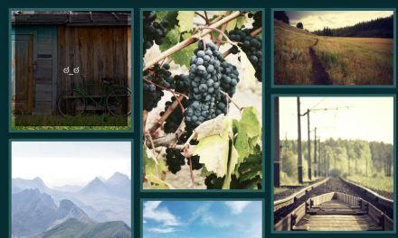 17+ Bootstrap Masonry Grid Layout Examples