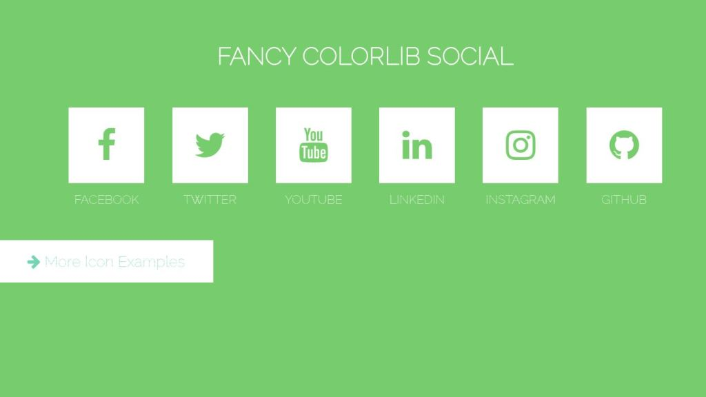 fancy colorlib social icon animated