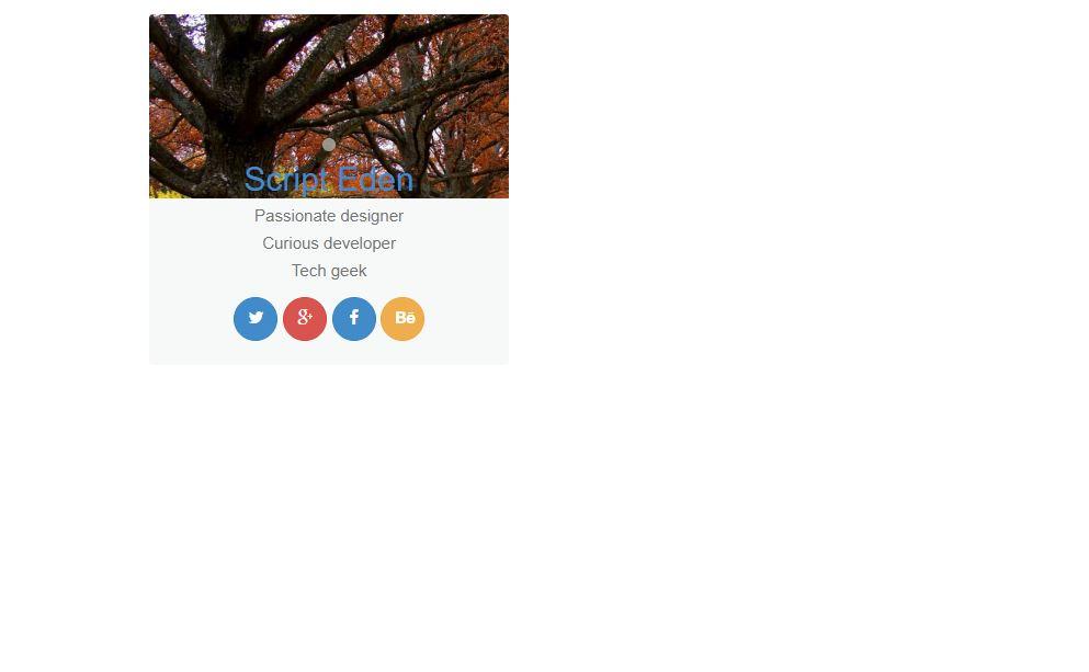 Bootstrap user profile card