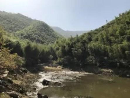 beautiful mountain scene in Moganshan, Zhejiang, China