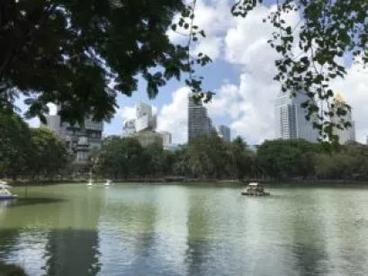 Lake in Lumphini Park, Bangkok