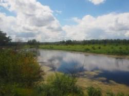Paysages verdoyants et étendues d'eau