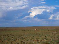 Une yourte dans le désert
