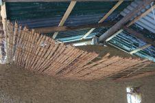 Ecorce de cannelier en train de sécher, pour devenir de la cannelle