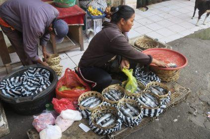Ce qu'il reste des poissons à 8h30 - Marché de Ubud