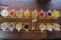 Sélection de boissons lors de la dégustation