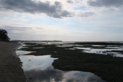 La mer à marée basse