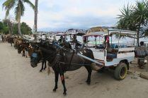Rangée de taxi locaux