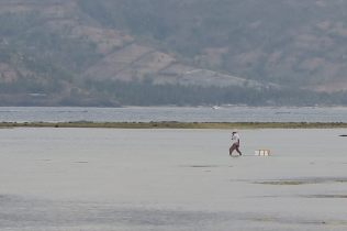 Un pêcheur à Gili Air