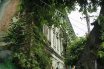 La végétation reprends ses droits sur un batiment à Yangon