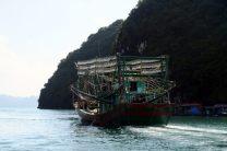 """Un bateau pour la pêche au """"lamparo"""""""