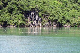 Les déchêts flottant à la surface des eaux