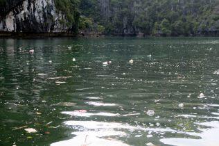Les déchets à la surface
