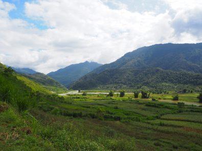 Les rizières et les montagnes