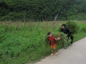Ici les enfants aussi travaillent aux champs