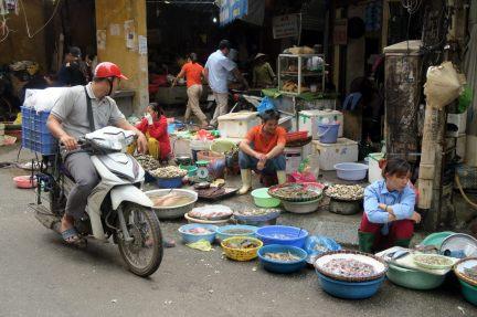 Poissons et fruits de mer au marché local