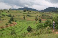 Julien panoramise les rizières du versant d'en face