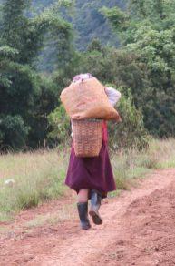 Une paysanne rentre des champs