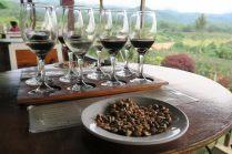 Dégustation de vins birmans