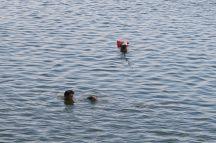 Les pêcheurs sont presque entièrement sous l'eau dans le lac Taungthaman