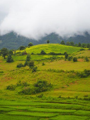 Rizières et nuages au loin sur les collines