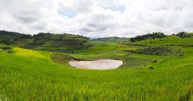 Un lac perdu au milieu des champs