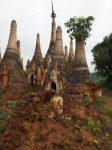 """Les pagodes à Indein. Au premier plan, une pagode effondrée et les restes de son """"Buddha"""""""