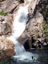 Chutes d'eau le long des gorges de Finch Hatton