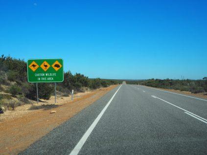 De nombreux panneaux alertant de la présence d'animaux sur le bord des routes