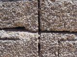 """Gros plan sur des briques de """"coquina"""", de la pierre de calcaire formé par des coquillages"""