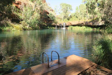 Fern pool, une piscine naturelle vraiment paradisiaque