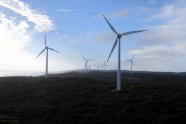 Au parc d'éoliennes d'Albany (Albany wind farm)