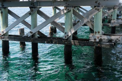 En dessous de la jetée, les piliers la soutiennent acceuillent de nombreux coraux