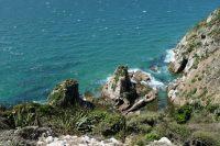 Le littoral aux Catlins