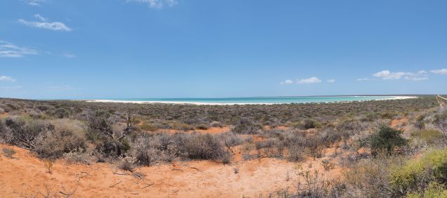 Panorama de Shell Beach