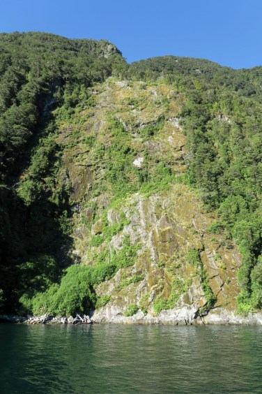 Une paroi du fjord où la végétation est récemment tombé à cause des pluies