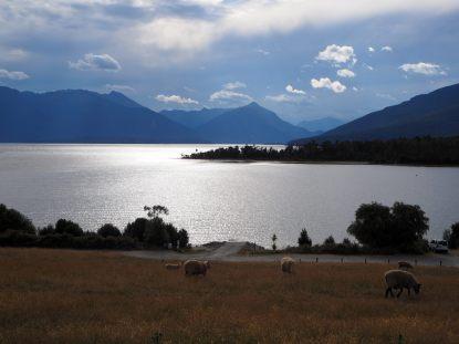 Retour sur le lac de Te Anau