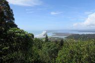 Point de vue sur la mer en haut de la randonnée à Okarito
