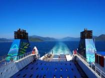 Dans les Fjords de Marlborough Sounds, en toute vers l'île du Nord, sur le Ferry
