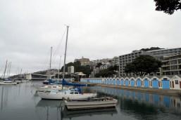 Sur le port de Wellington