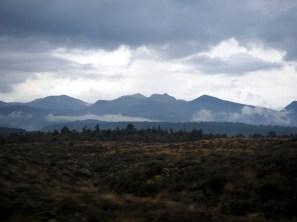 Sur la route vers le Tongariro National Park, après l'orage