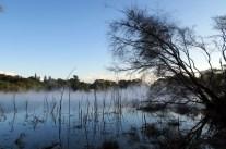 Le plus grand des lacs d'eau chaude au parc thermal de Kuirau à Rotorua