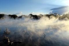 Parc thermal de Kuirau à Rotorua