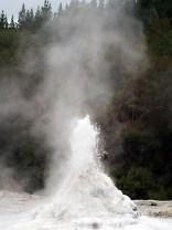 """Le geyser """"Lady Knox"""", parc thermal de Wai-o-tapu. C'est partit pour une éruption de plusieurs dizaines de minute"""
