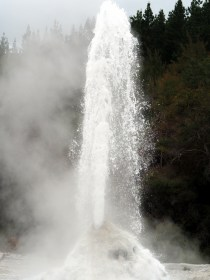 "Le geyser ""Lady Knox"", parc thermal de Wai-o-tapu. Là ca y est, ""ca crache"" !"